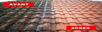 comment garder la toiture saine tousrenov1